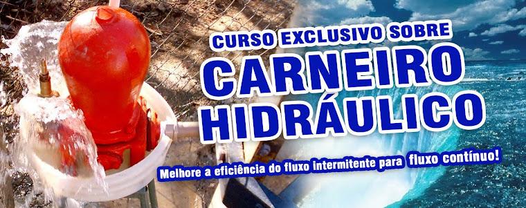 ::: CURSO CARNEIRO HIDRÁULICO  ::: Aprenda o uso de forma produtiva  ::::