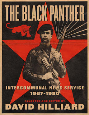 Are The New Black Panthers Obama's Civilian Police Force?