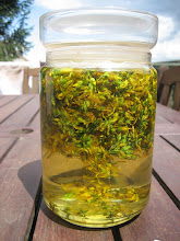hypericum oil for the healing balm before it turned red