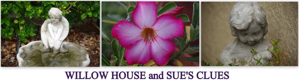Willow House with Sue Inge