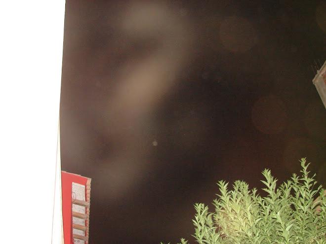 Estos ET son de Nibiru varios fenotipos hrs:12:18:55 am sec