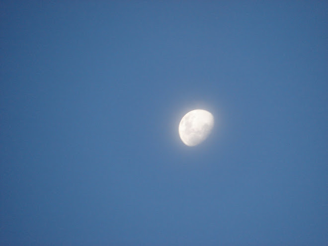 25,26 febrero,LA LUNA,Cielo fotos,2010 feb 25,x Fito.33.p,cielo,ovni,25,ufo,