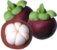 healthy mangosteen fruit benefits