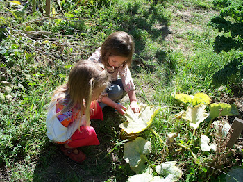Green Gulch Farm Zen Center Children's Program