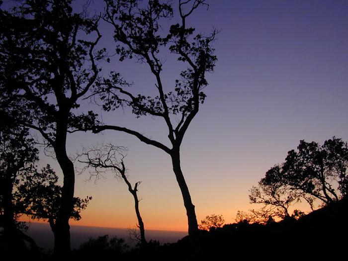 Tudo o que Deus fez é Maravilhoso