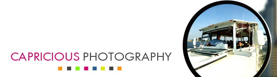 Capricious Photography Pricing