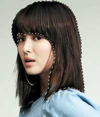 seleksi rambut