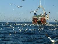 Trawler vist zee leeg