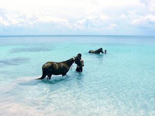 Isla Providencia, aguas transparentes