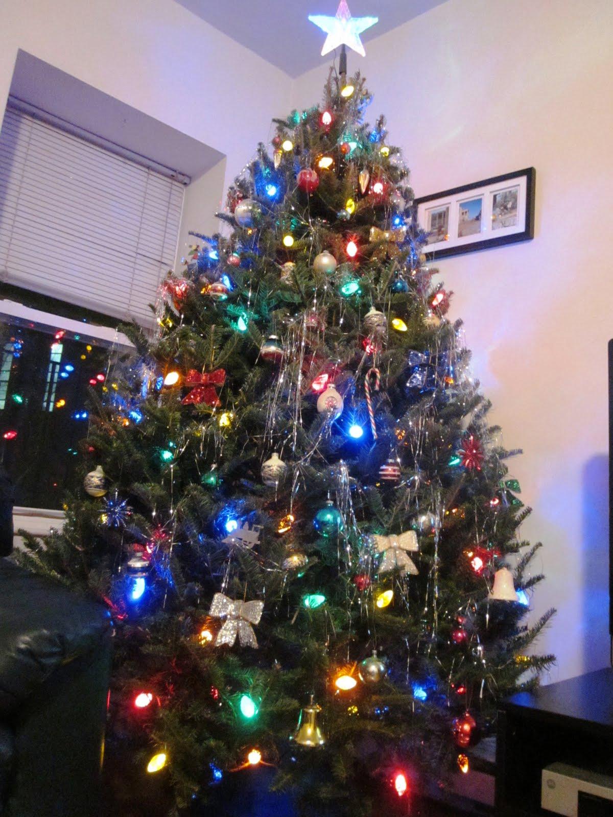 Indulge Inspire Imbibe: Oh Christmas Tree....