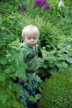 Mitt barnbarn