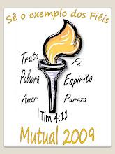 Tema Mutual 2009
