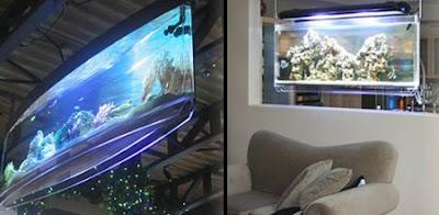 15 awesome and modern aquariums unusual things for Spacearium aquariums