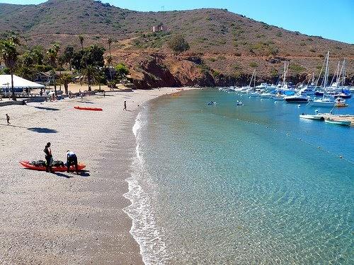 Santa Catalina Island California Beach Pictures United