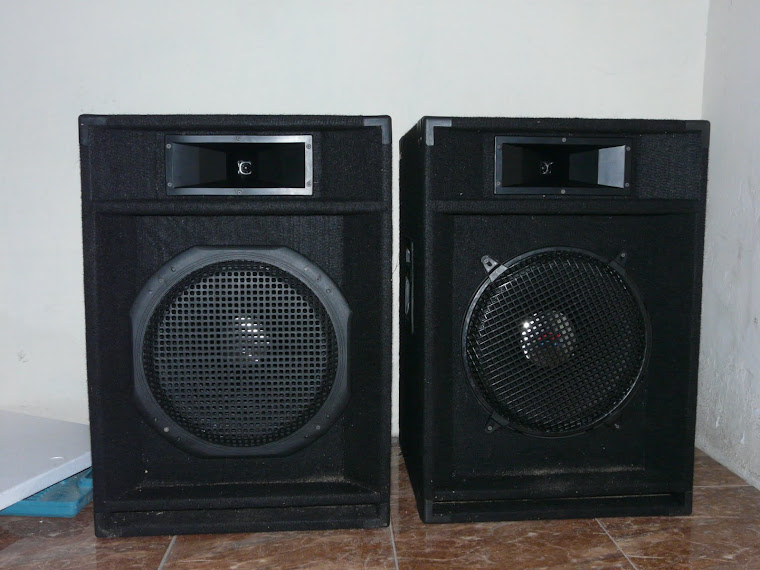 speaker 2 way 15 inch karpet
