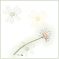 Green Daisy Tag