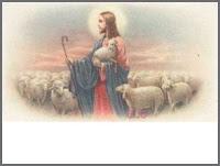 Shepherd ecg