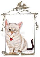 Kitten Frame
