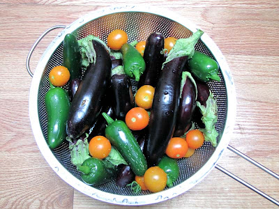 Rooftop Garden Vegetable Harvest