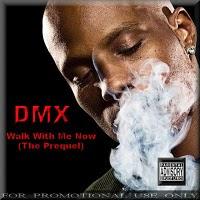 DMX- 2010
