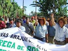 LA AMAZONÍA LUCHA!!!