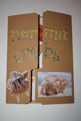 LAPBOOK ( libro fai da te che si ricava da una semplice cartella a tre lembi e qualche foglio di carta colorata) Hermit+crab+lapbook+019