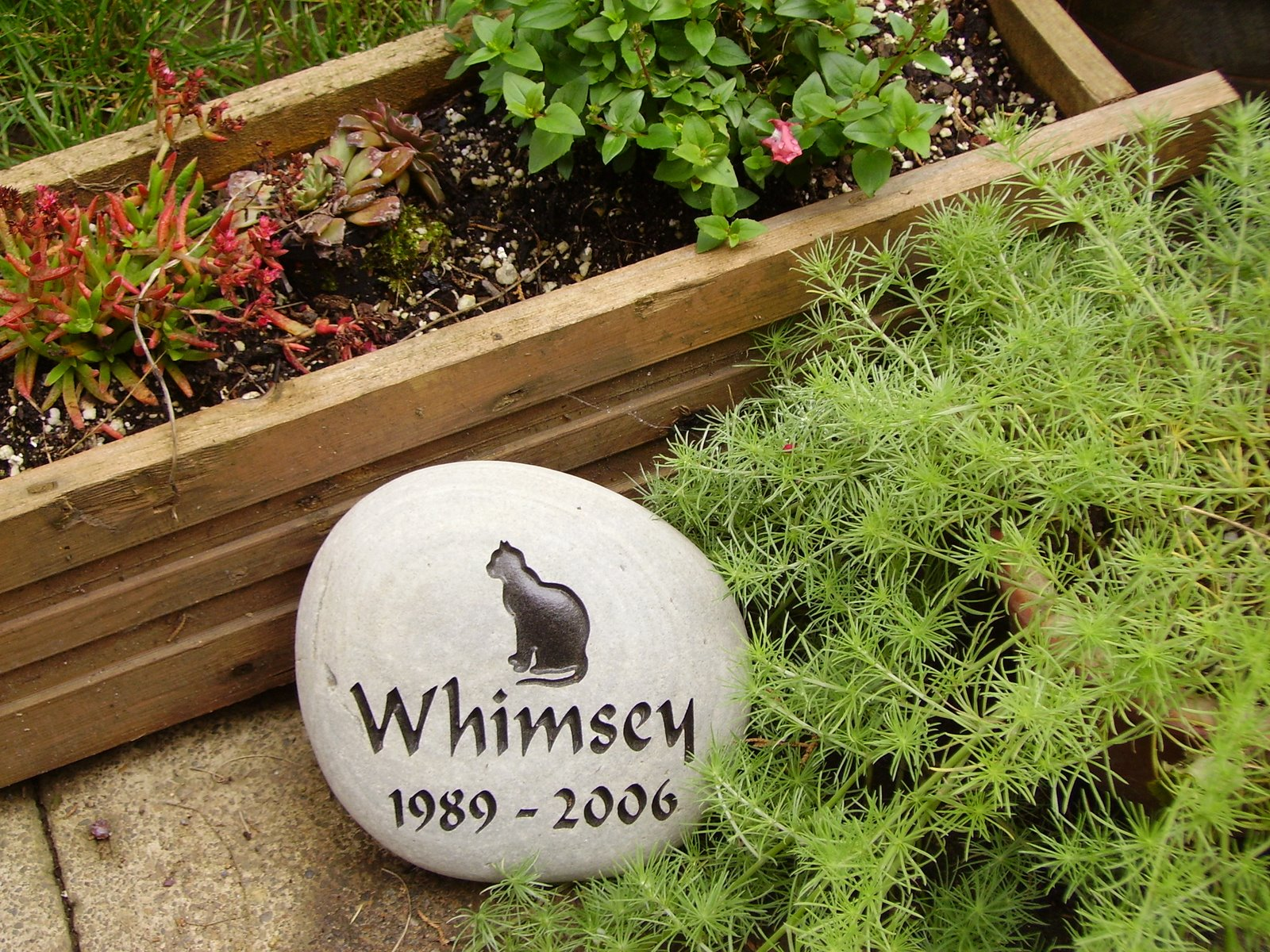 [Whimsey+stone]