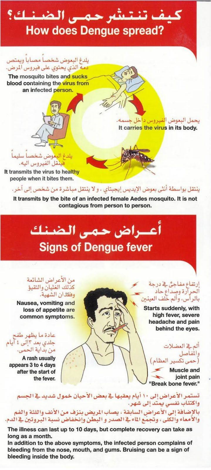dengue prevention essay Check out our top free essays on prevent dengue to help you write your own essay.