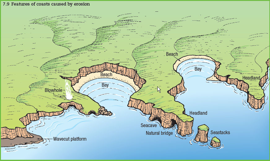 Diagram displaying major features of a coastline caused by erosion.