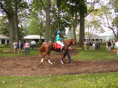 Adriano in the Delaware Park paddock before the Kent Stakes