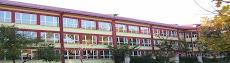 Liceul Pedagogic D.D. Perpessicius Braila