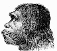 Artistic view of a Neanderthal Male