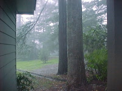 The rain while at Carl Sandburg's Home.