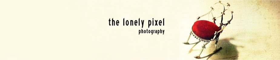 The Lonely Pixel Photography