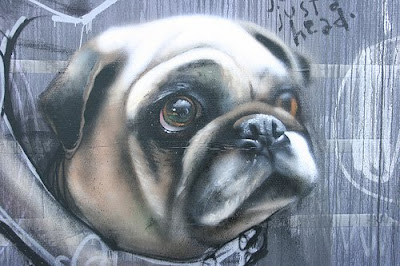 graffiti animals dog