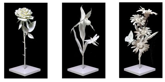 The new clay news sculptures by allen patty eckman pattys flowers are a series of beginning level products for creating beautiful life size fine art cast paper sculpted flowers taught in the eckman method mightylinksfo