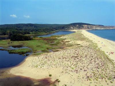 плажове Синеморец