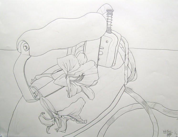 Contour Line Drawing In Art : Contour lines sarah s art