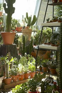 Paris côté jardin: Truffaut Stade de France présente son jardin suspendu