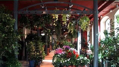 Paris c t jardin la boutique vilmorin c l bre l 39 arriv e - La boutique du jardin ...