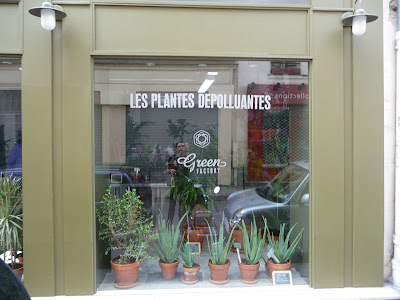 green factory la boutique des plantes d polluantes paris c t jardin. Black Bedroom Furniture Sets. Home Design Ideas