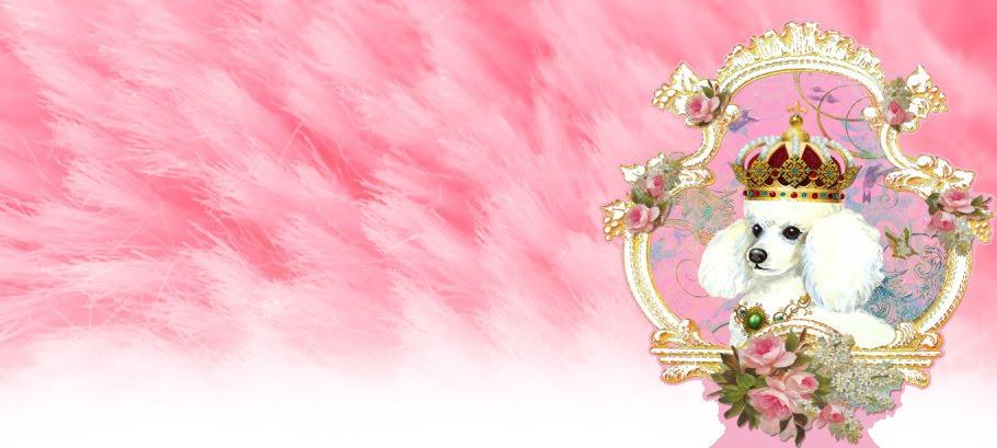 Pink Sein