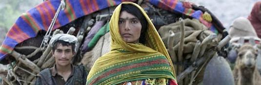 Hard Times for Afghanistan's Kuchi Nomads