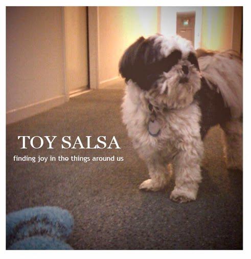 Toy Salsa