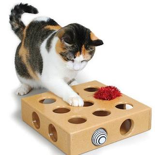 Gift Box Cats