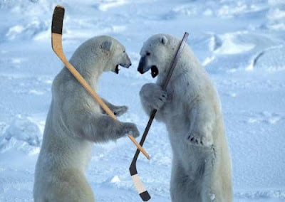 [Image: Polar+Bears+Hockey.jpg]