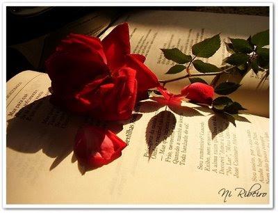 poesia de amor. Poesia De Amor poemas de amor.