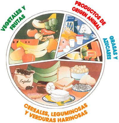 Alimentacion saludable alimentaci n saludable - Anemia alimentos recomendados ...