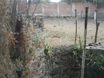 Visita al terreno de la noria con tunel y la aparición IMG_0203+%28Large%29