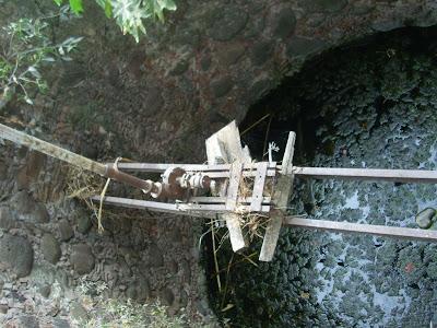 Visita al terreno de la noria con tunel y la aparición IMG_0207+%28Large%29